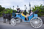 Private Carriage Trip of French Quarter from Orleans