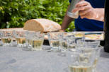 Veneto Small-Group Wine Tasting Tour, Venice, Wine Tasting & Winery Tours