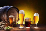 Half-Day Beer Cider and Wine Tour