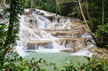 Jamaica Combo Tour: Dunn's River Falls and Bob Marley's Nine Mile, Montego Bay,
