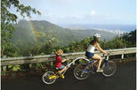 Oahu Downhill Biking Adventure with Optional Hike, Oahu, Bike & Mountain Bike Tours