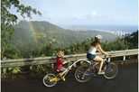 Oahu Downhill Biking Adventure with Optional Hike