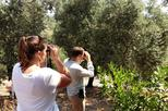 Bird Watching Tour with Ephesus Visit from Kusadasi