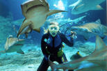 Sunshine Coast UnderWater World Entrance Ticket with Shark Dive Xtreme, Noosa & Sunshine Coast, ...