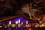Cairns Flames of the Forest Dining Experience, Cairns & the Tropical North, Dining Experiences