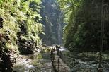 1 day private tour of most beautiful heishan valley in chongqing in chongqing 364747