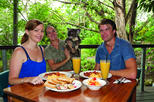 Breakfast with the Koalas at Hartley's Crocodile Adventures from Cairns or Palm Cove