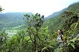 Oahu Mountain Rainforest Small Group Adventure, Oahu, Hiking & Camping