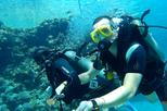 INTRO DIVING AT TIRAN ISLAND AND SNORKELING