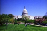 Washington DC Guided Bus Tour - The Best of DC