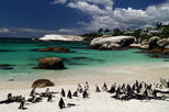 Cape Peninsular Day Tour from Cape Town