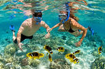 Full day in playa blanca - Barú with Snorkel