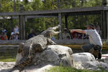 Gatorland General Admission Ticket