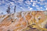 Yellowstone Upper Loop Tour from Cody Wyoming