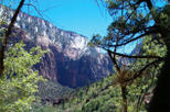 Zion National Park mit Tour Trekker