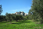 Arles, Les Baux and Saint Remy de Provence from Marseille, Marseille, Day Trips