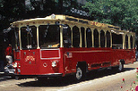 Chicago Hop-on Hop-off Trolley and Upper Decker Tour