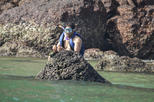 Goa Island Tour - Trip to Monkey Beach and Grand Island with Snorkeling