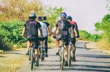 Private Cycling Tour: Experience the Beauty of Udaipur at Sunrise