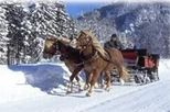 Private Horse Drawn Sleigh Ride from Salzburg, Salzburg, Seasonal Events