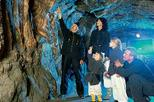 Salzburg Super Saver: Original Sound of Music and Salt Mines Day Trip