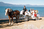 Lake Tahoe Carriage Ride