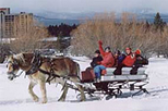 Lake Tahoe Sleigh Ride, Lake Tahoe, Seasonal Events