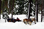 Sunset Sleigh Ride and Dinner, Lake Tahoe, Dining Experiences