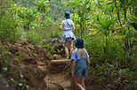 Maui Treasure Hiking Trek, Maui, Hiking & Camping