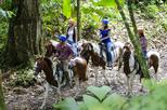 Canopy-Rappel-Villas Maleku and Horseback Riding from Arenal