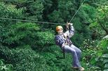Half-Day Monteverde Zipline, Rainforest Canopy and Hanging Bridges Tour