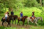 Horseback Riding with Waterfall Included from Jacó