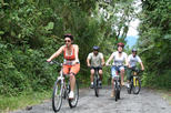 Mountain Bike Rides- Volcano- Lake 'Moderate Ride' from Arenal