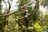 4-in-1 Tulum Adventure: Zipline, Cavern Rappel, Cave Snorkel and Skycycle, Cancun,