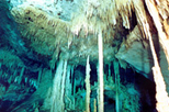 Cave Diving at Tulum's Hidden World Cenote Park with Transport from Cancun, Cancun, Scuba & ...