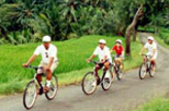 Bali Cycling Eco Tour with Buffet Lunch, Bali, Bike & Mountain Bike Tours