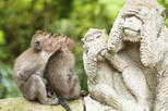 Asia - Indonesia: Bali Monkey Forest, Mengwi Temple and Tanah Lot Afternoon Tour