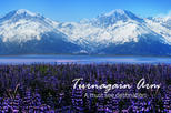 TURNAGAIN ARM SHUTTLE SERVICE: Your transport to Adventure