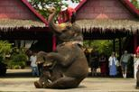 Bangkok Rose Garden Cultural Center and Thai Village Half-Day Tour, Bangkok, Day Trips