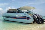 Phuket to Phi Phi Islands by Speedboat, Phuket, Full-day Tours