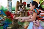 Singapore Jurong Bird Park Tour, Singapore,