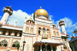 Singapore Shore Excursion: Singapore's Cultural Heritage Tour