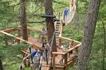 Treetop Canopy Walk in Whistler