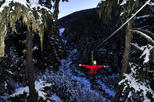 Canada - British Columbia: Winter Twilight Zipline Adventure in Whistler