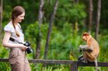 3-Day Tour from Sabah: Sandakan Sightseeing and Wildlife Experience in Sepilok and Selingan, Kota ...