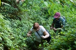 Private Tour: Langkawi Rainforest Trekking Adventure, Langkawi, Nature & Wildlife