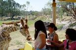 Guadalajara Zoo All-Inclusive Admission Ticket