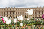 Skip-the-Line Versailles Palace Tour for Families