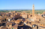 Tuscany Towns and Chianti Wine-Tasting Tour from Florence: Siena and Pisa