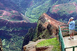 Waimea Canyon Bicycle Downhill, Kauai, Bike & Mountain Bike Tours